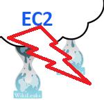wikileaks-Amazon