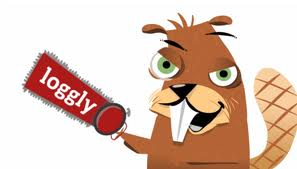 Loggly2 CEO Series: Interview with Logglys CEO, Kord Campbell