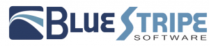 Bluestripe logo FINAL 300x67 2013 – The Year of Application Performance Management for the Hybrid Cloud